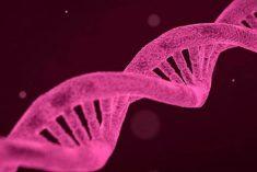 Przełom w leczeniu schorzeń siatkówki. Pierwsza na świecie genoterapia zatwierdzona!