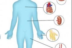 Co powinniśmy wiedzieć o cukrzycy?