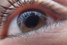 Nowy lek dla pacjentów cierpiących z powodu wysiękowej postaci AMD.