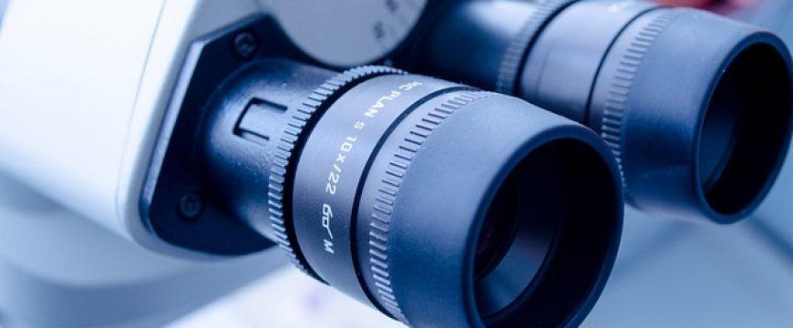 Kolejne optymistyczne doniesienie dotyczące przyszłego leczenia schorzeń genetycznych siatkówki otrzymane od Retina International